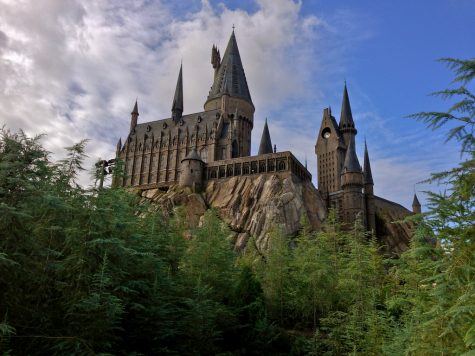 What Harry Potter Setting Should You Live In?