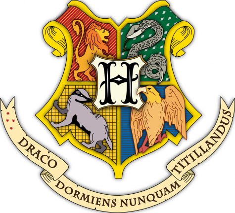 Can You Guess the Hogwarts House of These Teachers?