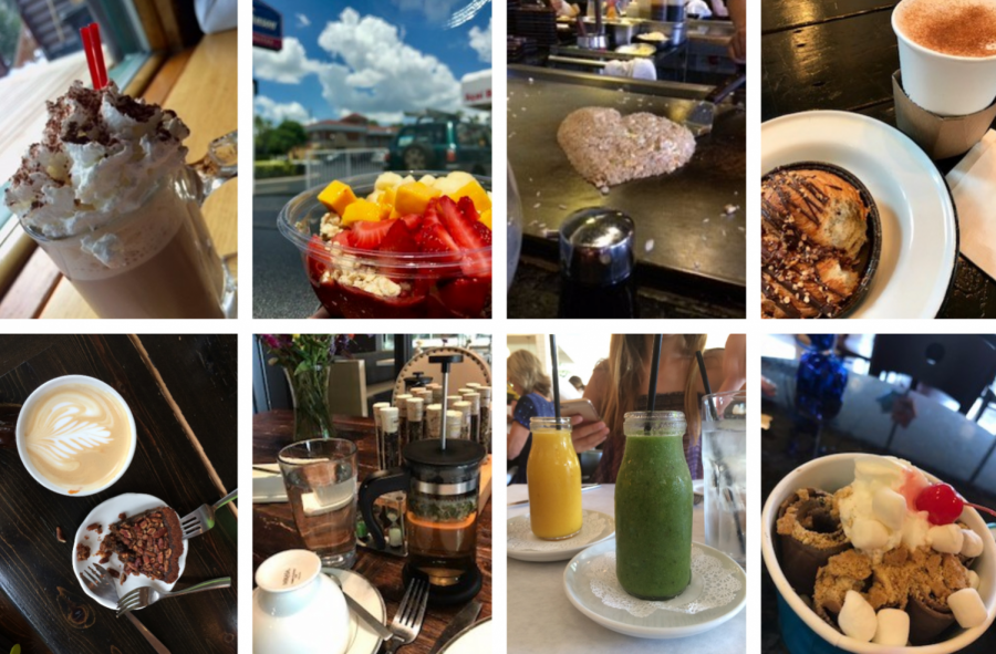 DISCOVERING DELICIOUS DISHES: These pictures are from both Tampa and Chicago restaurants. I cannot wait to share my new culinary findings with all of you, as I explore the food scene of Tampa Bay! Photos by Sloane Daley.