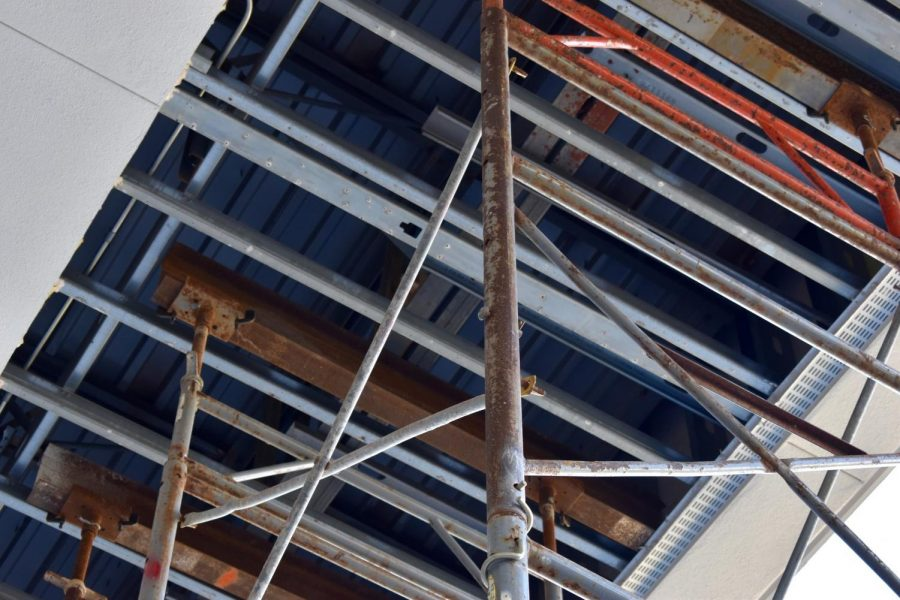 LOFTY GOALS: Part of the ceiling in the Aye Arboretum has been taken out to accommodate the scaffolding.