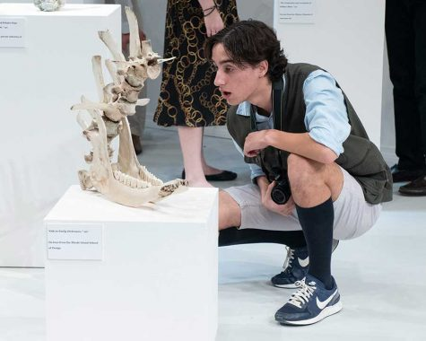 STUDENT PIECES ON SET: Various pieces featured on the set of Museum were created by members of Berkeley's Advanced Art class, including Maureen Tanner '19, Asher Behar '19, Alexandra Politowicz '20, Jacqueline Hennecke '20, Ornella Pigeon '19.